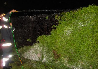 Heckenbrand-Brandeinsatz-Brand-Kompost (1)