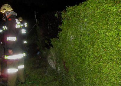 Heckenbrand-Brandeinsatz-Brand-Kompost (3)