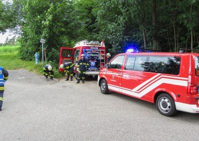 Brandeinsatz-Elefantengrasfeld-Brand-Rosenleiten (1)