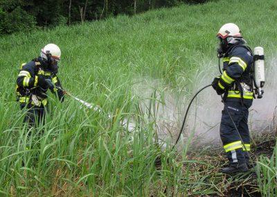 Brandeinsatz-Elefantengrasfeld-Brand-Rosenleiten (4)