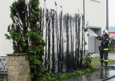 Heckenbrand-Brandeinsatz-Brunnengasse (3)