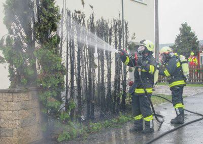 Heckenbrand-Brandeinsatz-Brunnengasse (5)