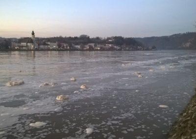 Umwelteinsatz-Donau (2)