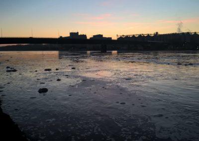 Umwelteinsatz-Donau (3)