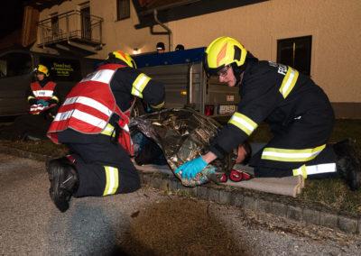 Brandeinsatz-Personenrettung-Scheune (7)