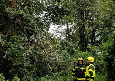 Brandeinsatz-Stromleitung-Baum (1)