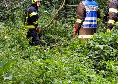 Brandeinsatz-Stromleitung-Baum (3)