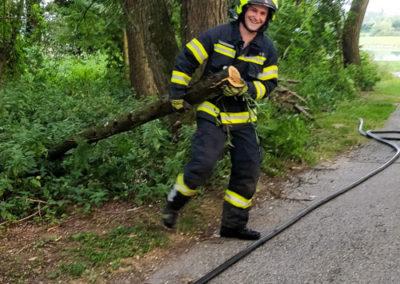 Brandeinsatz-Stromleitung-Baum (6)