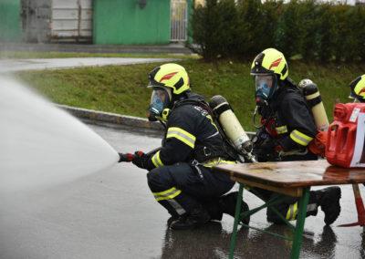 Branddienstleistungsprüfung-Löschen